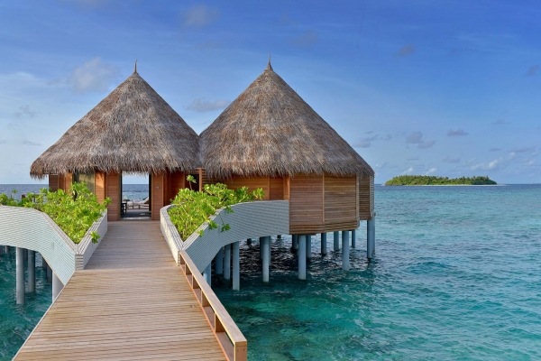 Ocean Houses
